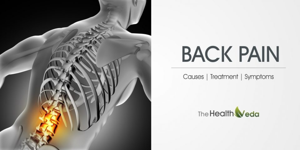 Back Pain – Reasons, Remedies And Supplements