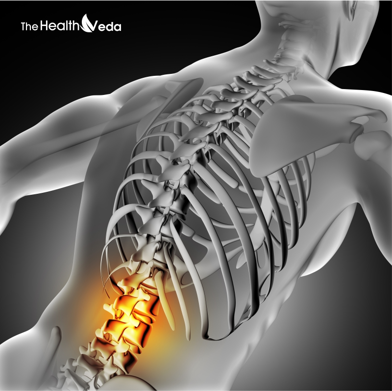 The-healthveda-back-pain