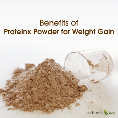 Benefits-of-Proteinx-Powder-for-weight-gain