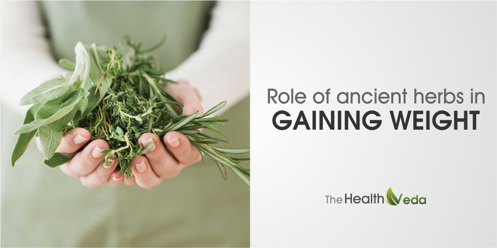 Role-of-ancient-herbs-in-gaining-weight