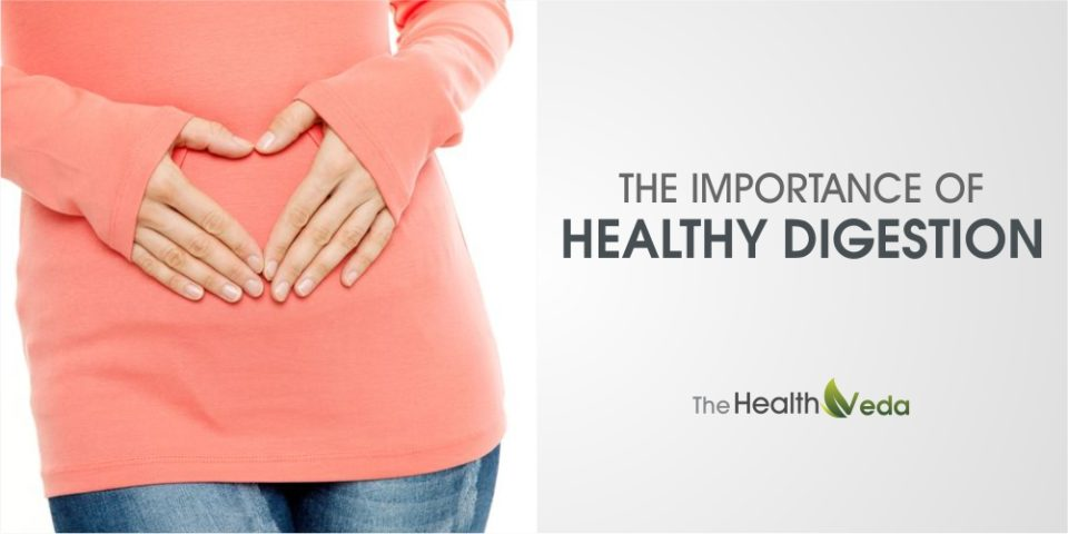The Importance of Healthy Digestion