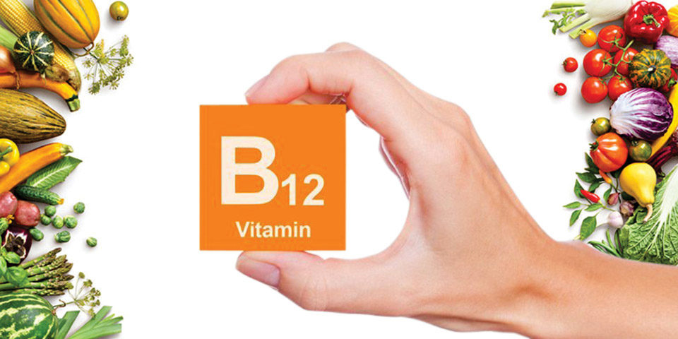 Why is vitamin B12 needed for your body