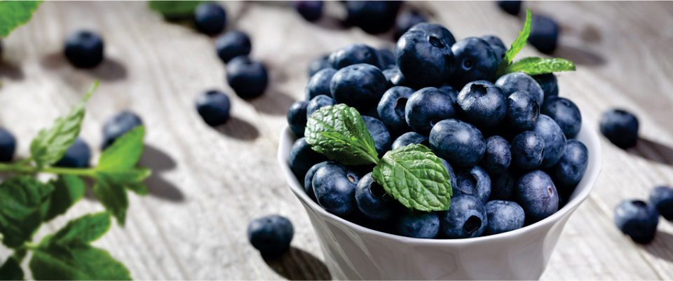 EAt-Blueberries-to-Lower-Cholesterol-Level