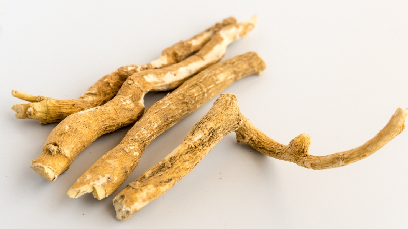 Ashwagandha-is-Good-for-Body-and-Mind