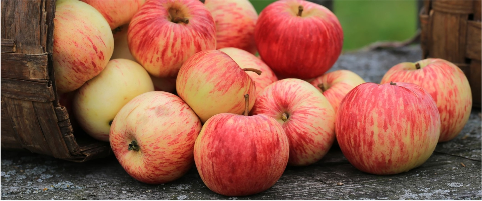 Eat-Apples-to-Reduce-Belly-Fat-and-Get-Perfect-Shape