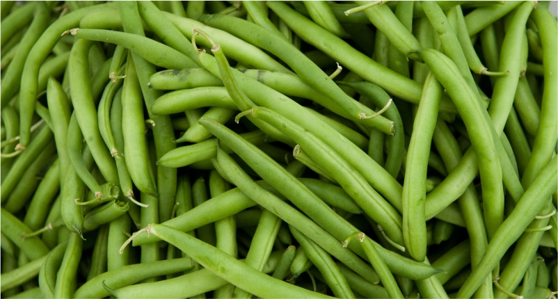 Beans-You-Must-Add-in-Your-Diet
