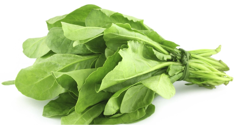 Spinach-You-Must-Add-in-Your-Diet`