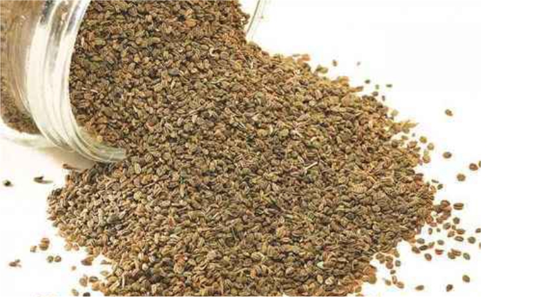 Use-Ajwain-(Carom-Seeds)-in-your-diet-to-Get-Rid-of-Gastritis-Pain