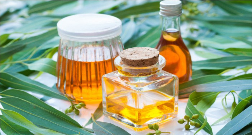 Use-Eucalyptus-Oil-to-Heal-Headache