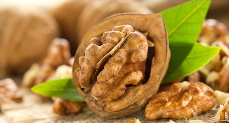 Walnuts -You-Must-Add-in-Your-Diet